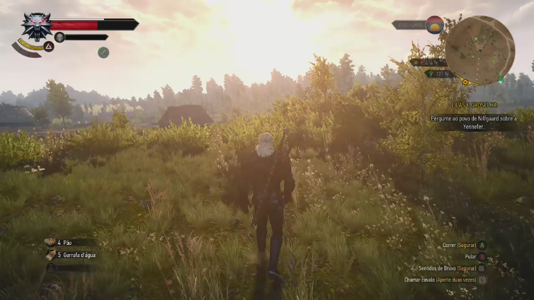Felipe170 playing The Witcher 3: Wild Hunt - Game of the Year Edition